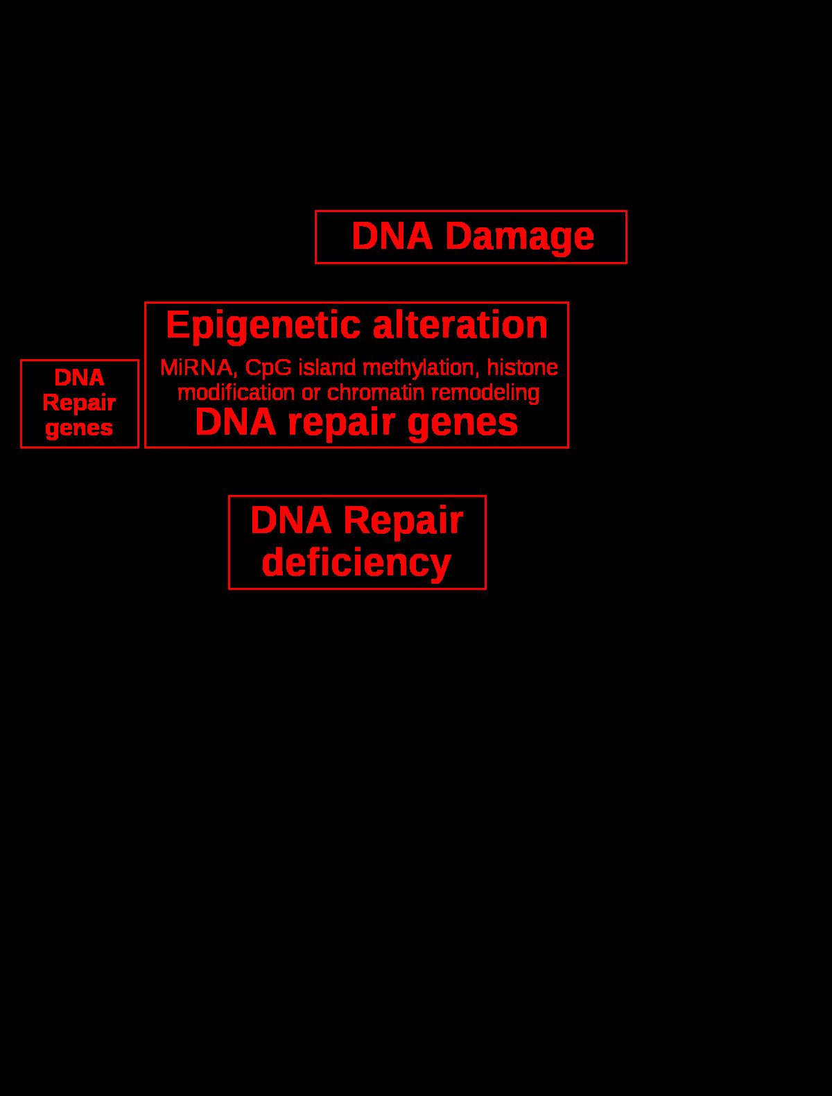 genetikai rák gyógyszer célpontok