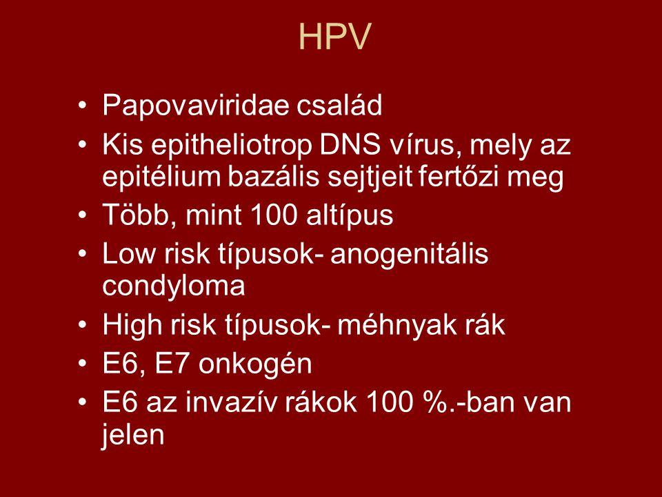a papillomavírus egész életen át tartó hordozója hpv impfung bei jungen notig