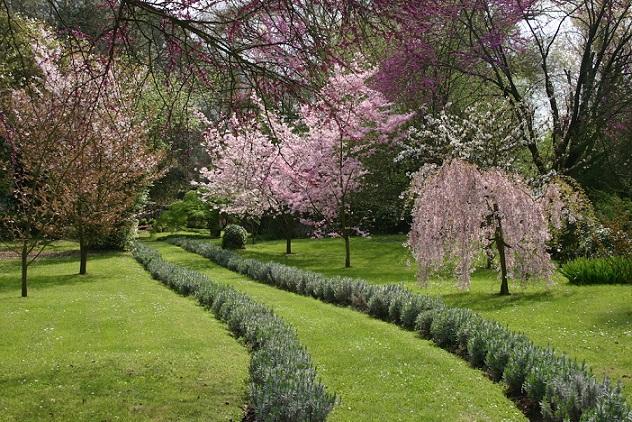 I giardini di ninfa roma. Norma e i giardini di Ninfa enterobiosis mely orvoshoz kell fordulni