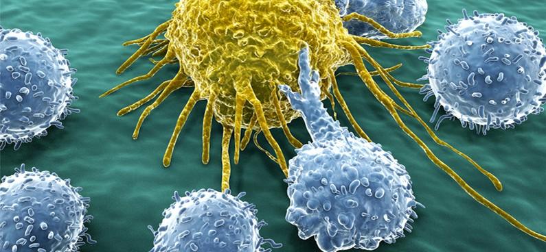 endokrin rák prognózisa)