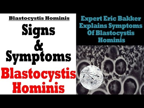 Blastocystis hominis :: Dr. Boncz Ágota - InforMed Orvosi és Életmód portál :: parazita, zoonosis