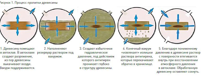 hpv bőrfertőzés kezelése