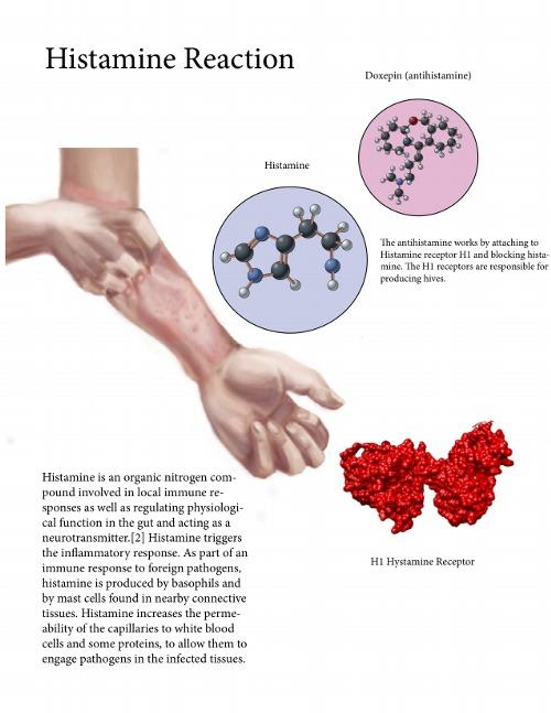 condyloma egy nő gyógyszeres kezelésében papilloma bór