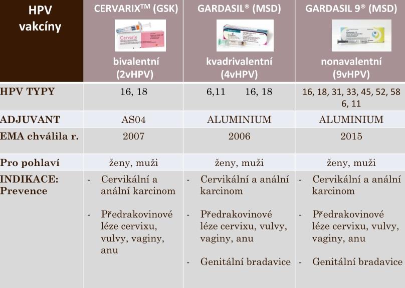 Hpv szemolcs kepekben. Diéta giardiasis - megszabadítja a szervezetet a Giardia.