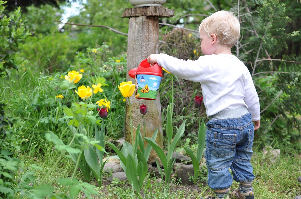 kert és gyerekek