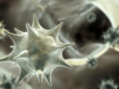 papilloma daganatok