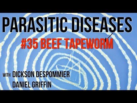 parazita kezelési program
