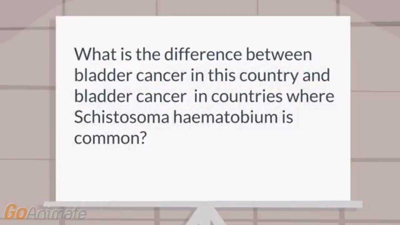 schistosomiasis és gmat betegség