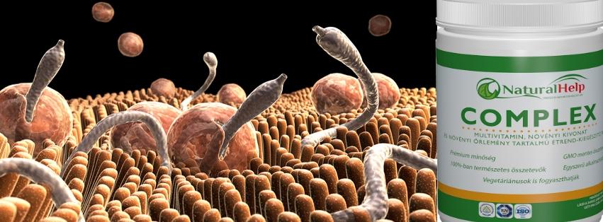 paraziták a tünetekben
