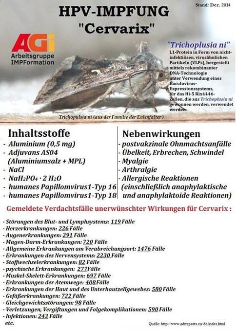 Protozoon jelentése magyarul » DictZone Orvosi-Magyar szótár