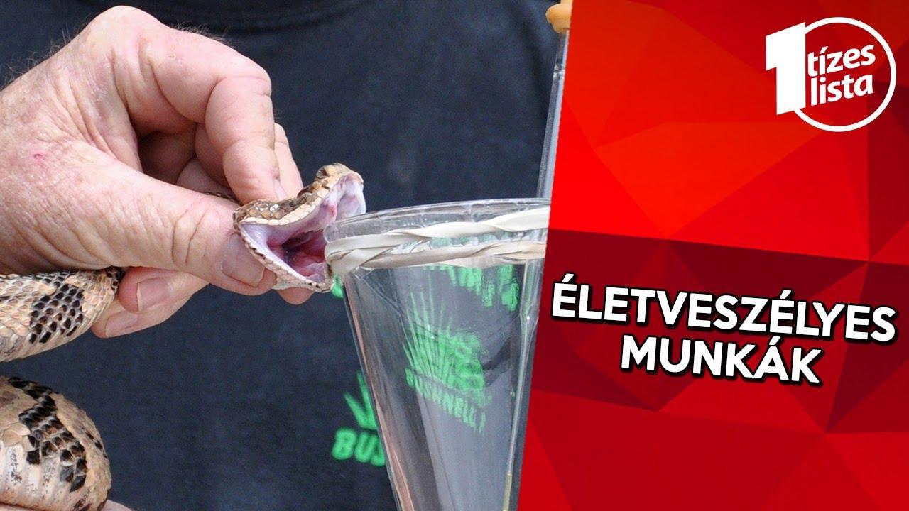Hatékony gyógymódok a férgek és paraziták ellen, Hogyan lehet pinwormokat szerezni felnőtteknél