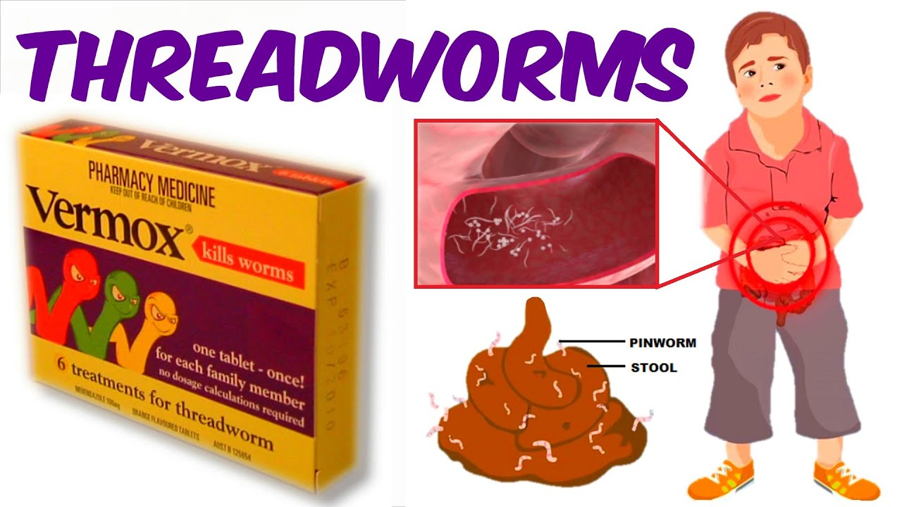 takarmány a pinwormok számára