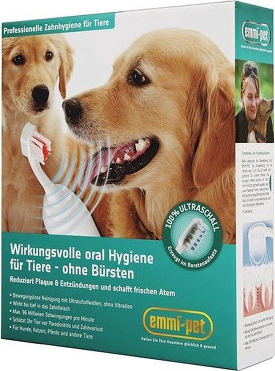 papillomavírus honden