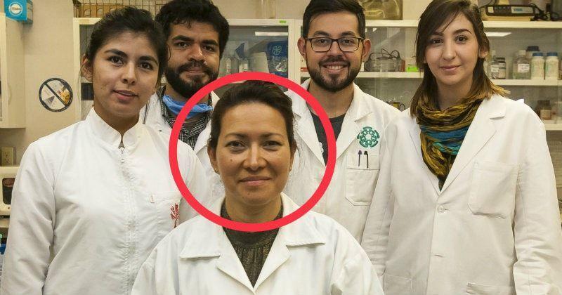 neuroendokrin rák kiújulása sinonazális papilloma fordított típus